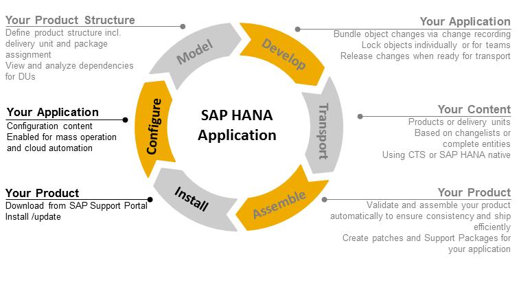 Sap application lifecycle management pdf