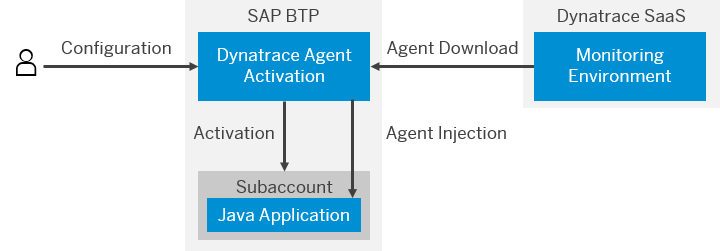 What is Agent Activation for Dynatrace - SAP Help Portal