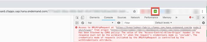 CORS Errors When Testing with Google Chrome Browser with