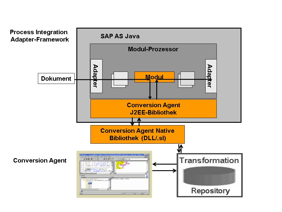 Sap Conversion Program